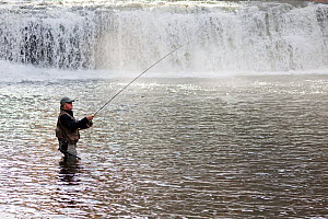 Dick Manrow fishing below Hooker Falls in the DuPont State Forest, Transylvania County. North Carolina, USA, October 2013. Model released. - Kirkendall-Spring