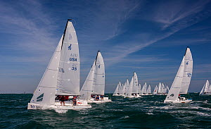 Cluster of white sails racing during 2013 Key West Race Week, Florida. All non-editorial uses must be cleared individually. - Onne van der Wal