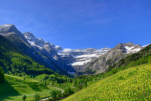 Alpine meadows and mountains above Gavarnie village with the Cirque de Gavarnie in the distance, Pyrenees National Park, France, June 2013.  -  Robert  Thompson