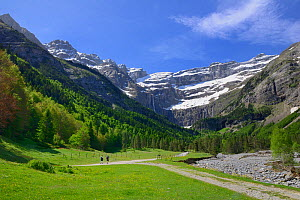 Two people walking along track leading to the Cirque de Gavarnie, Pyrenees National Park, France, June 2013.  -  Robert  Thompson