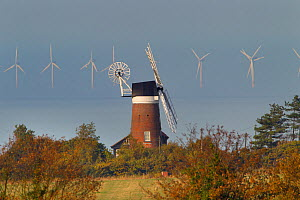 Windmill and North sea wind farm, Weybourne, Norfolk, UK, October 2013.  -  Ernie  Janes