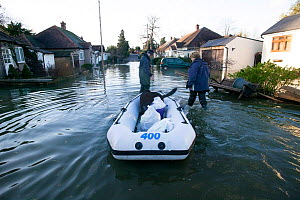 Residents transporting their dog on a rib during February 2014 floods, Sunbury on Thames, Surrey, England, UK, 15th February 2014. - David  Woodfall