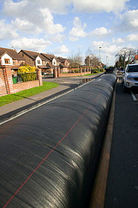 Flood protection barrier (filled with water) to protect homes during February 2014 flooding. Chertsey, Surrey, England, UK, 16th February 2014. - David  Woodfall