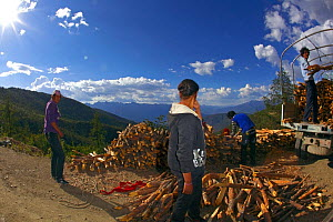 Fish eye view of people collecting firewood, Daocheng City, Sichuan Province, China, July 2010. - Dong Lei