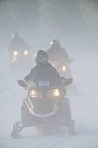 Guided snowmobile tours in  Yellowstone National Park, Wyoming, USA, January 2013. - Jeff Vanuga