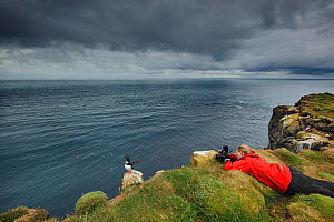 Lady photographing Puffins (Fratercula arctica) on cliffs, Latrabjarg, Iceland, July 2012. Model released. - Terry  Whittaker