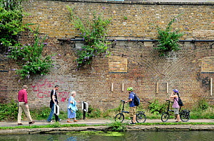 Leisure cyclists giving way to people walking on the Regent's Canal tow-path, Kings Cross, London Borough of Camden, England, UK, August 2013.  -  Pat  Tuson