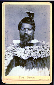 Unidentified Maori man with two huia tail feathers in his hair, and wearing a feather cloak, Hauraki district, New Zealand. Taken between 1872�86 by the Foy Brothers, James Joseph Foy (1845�90), Josep...  -  David Tipling