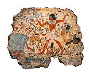 Painting from the tomb chapel of Nebanum, Thebes, Egypt. Late 18th Dynasty, around 1350 BC. Nebamun is shown hunting birds, in a small boat with his wife Hatshepsut and their young daughter, in the ma... - David Tipling