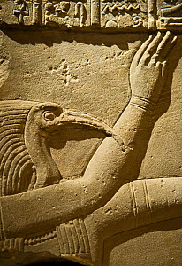 Cornice block of the Ibis headed Thoth poured water over the head of the King. Dating to AD 41-68 from a screen wall in the temple of Harendotes (Horus the Avenger) on the island of Philae, Lake Nasse...  -  David Tipling