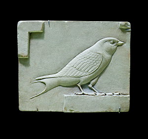 Sculpture from ancient Egypt showing the swallow, a symbol of everlasting life.  -  David Tipling