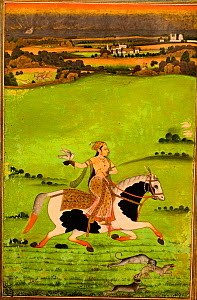 Opaque watercolour painting from mid 1700's depicting Chand Bibi hawking. Chand Bibi (1547-99) was the queen of an Islamic sultanate in central India..  -  David Tipling