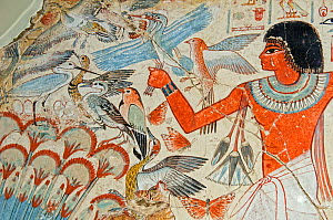 Detail of mural from the tomb chapel of Nebanum, Thebes, Egypt. Showing Nebamun hunting birds in the marshes around the Nile. From late 18th Dynasty, around 1350 BC?.  -  David Tipling