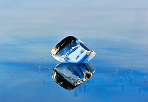 Ice fragment reflected in the ice of Lake Baikal, Siberia, Russia, March. - Olga Kamenskaya