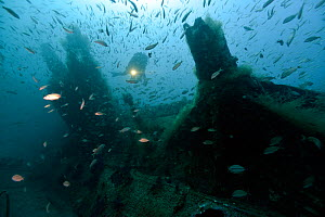 Diver on the conning tower of U-Boat -U352. Type VIIC sunk off Cape Lookout on the 9th May 1942, North Carolina, USA, September 2013. - Michael Pitts