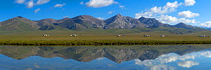 Song-Kul Lake with yurts from herdsmen during summer pasture, Karatal-Japyryk State Nature Reserve, Tian Shan mountains, Kyrgyzstan, Central Asia, July 2013. Stiched panorama out of two exposures.  -  Axel  Gomille
