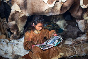 Nadia Takui, a Chukchi girl, dressed in a traditional reindeer skin Kamleika (parka) reads a magazine at the front of the polog (sleeping area) in a Yaranga (tent) at a reindeer herders' summer camp....  -  Bryan and Cherry Alexander