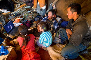 A Chukchi family watching a movie on a notebook computer inside a Yaranga (traditional tent) at a reindeer herder's camp. Iultinsky District, Chukotka, Siberia, Russia, August 2013.  -  Bryan and Cherry Alexander