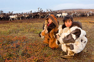 Nadia Takui takes Rima Votgyrgina, age 18 months, to watch the reindeer during the Chukchi 'Festival of the Young Reindeer' out on the tundra. Iultinsky District, Chukotka, Siberia, Russia, August 201...  -  Bryan and Cherry Alexander