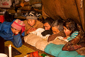 Chukchi family watching a movie on a notebook computer by candlelight inside a Yaranga (traditional tent) at a reindeer herder's camp. Iultinsky District, Chukotka, Siberia, Russia, August 2013.  -  Bryan and Cherry Alexander