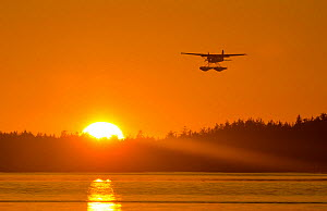 Float plane flying in front of the sunset, Vancouver Island, British Columbia, Canada, July.  -  Bertie Gregory