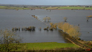 Overview of extensively flooded pasture land, with flooded farm tracks and road, West Sedgemoor, Somerset Levels, England, UK, February 2014. - Nick Upton