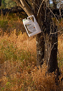 'Roundup' herbicide is used extensively in the Olive groves, killing off insects and vegetation, Corfu, Greece, May. - Stephen  Dalton
