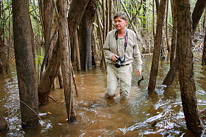 Photographer Michel Roggo in the flooded forest of the Amazon, Rio Negro tributary, Amazon, Brazil, February 2011. Taken for the Freshwater Project. - Michel  Roggo