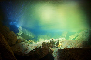 Underwater landscape of the Clearwater river, outside Clearwater cave. Tributary of the Sungai Melinau river, Gunung Mulu National Park, Sarawak, Borneo, Malyasia, March 2012. Taken for the Freshwater...  -  Michel  Roggo