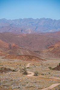 Road through the Richtersveld National Park and World Heritage Site, Northern Cape, South Africa, August 2011. - RHONDA KLEVANSKY