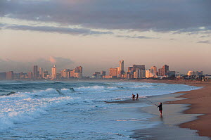 People on Durban beach at dawn with city in the distance, Durban, KwaZulu-Natal, South Africa, August 2009. - Rhonda Klevansky