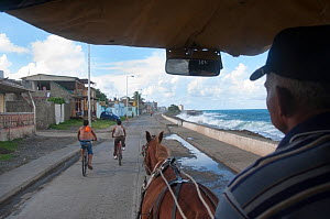 View from inside horse drawn taxi with two cyclists on road, Baracoa, Guantanamo province, Eastern Cuba, November 2011.  -  RHONDA KLEVANSKY