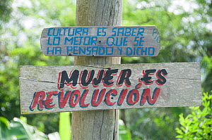 """Politcial slogans nailed to a tree stating: """"Culture is knowing the best that has been thought and said"""" and """"Woman is revolution"""" near Baracoa, Cuba, November 2011.  -  RHONDA KLEVANSKY"""