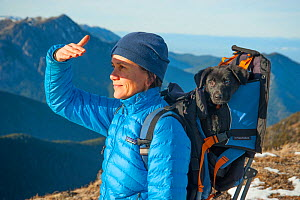 Woman hiker with tired puppy in a backpack, Mount Townsend, northwest Olympic National Park, Olympic Peninsula, Washington, USA. November 2013. Model released. - Steven Kazlowski