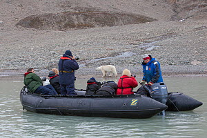 Tourists photographing a Polar bear (Ursos maritimus) from zodiac boat, Svalbard, Norway, August 2011.  -  Peter Cairns