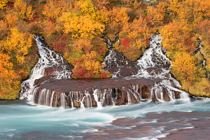 Waterfalls flowing into Hvita River at Hraunfossar, Iceland, September 2013. - Peter Cairns