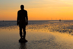 A figure from Antony Gormley's 'Another Place' installation on the shore at Crosby, Merseyside, UK. April 2014. - Chris  Mattison
