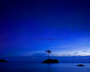 A lone palm tree at twilight off the coast of American Samoa. January 2012. - Floris  van Breugel