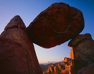 Balanced Rock in the Grapevine Hills at dawn, Big Bend National Park, Texas, USA.  -  Jack  Dykinga