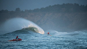 Surfers competing in the Mavericks 2014 surfing competition, with man on jet ski, Half Moon Bay, California, USA, January 2014.  -  Michael  D. Kern
