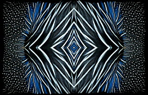 Kaleidoscope pattern formed from picture of Vulturine Guineafowl (Acryllium vulturinum) hackle feathers Restricted for Editorial use until December 2015 - Michael  D. Kern