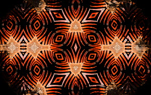 Kaleidoscope pattern formed from picture of Iguana (Iguana iguana) spines. Restricted for Editorial use until December 2015 - Michael  D. Kern