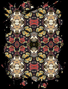 Kaleidoscope pattern formed from picture of Rhinoceros viper (Bitis nasicornis) scales. Restricted for Editorial use until December 2015  -  Michael  D. Kern