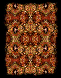 Kaleidoscope pattern formed from picture of an Eyelash viper (Bothriechis schlegelii) EMBARGOED FOR NAT GEO UNTIL the end of 2015  -  Michael  D. Kern