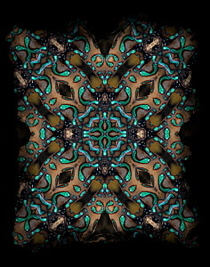Dart Frog Kaleidoscope pattern formed from picture of Blue poison dart frog (Dendrobates auratus) EMBARGOED FOR NAT GEO UNTIL the end of 2015  -  Michael  D. Kern