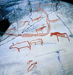 6000-7000 years old stone-age rock carvings, Hjemmeluft UNESCO World Heritage site, Alta, Finnmark,  Norway. - Pal Hermansen