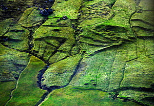 Aerial view of pastures on the Faroe Islands.  -  Pal Hermansen