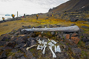 Remnants of primitive hut where Hjalmar Johansen and Fridtjof Nansen overwintered in Arctic Russia, during Fram Expedition, 1895-96, Franz Josef Land, Russia, July 2004.  -  Pal Hermansen
