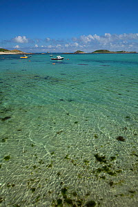 View to sea from the beach at St Martin's, The Isles of Scilly, July 2013.  -  Sue Daly