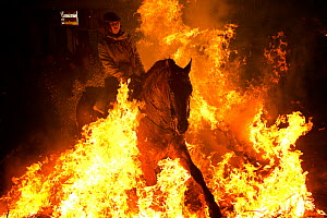 Young woman jumping through fire to purify her horse, during the Luminarias festival, held every January in San Bartolome de Pinares, Avila Province, Castile and Leon, Spain, January 2014.  -  Kristel  Richard